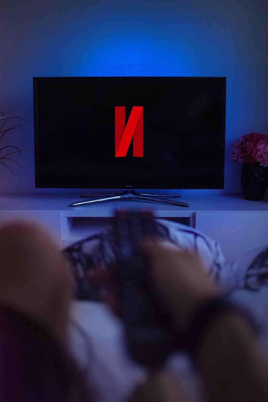 Où taper les codes Netflix ?